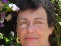 Lisy Telles (Artista Plástica – Juiz de Fora MG)  #EmBuscadas99Curtidas