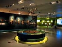 Museu em Congonhas celebra a arte de Aleijadinho