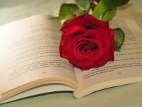 """O """"segredo"""" do sucesso de alguns livros juvenis"""