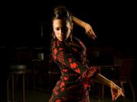 Na Argentina, viver de dança é pura Trans-piração!
