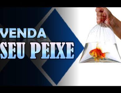 ENTREVISTA DE EMPREGO: Você sabe vender o seu peixe?