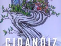 Dança e Poesia na FLIP – Lançamento do Livro CIDANÓIZ