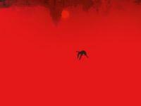 A Noite Devorou o Mundo – Um filme de terror zumbi que tem muito mais para apresentar
