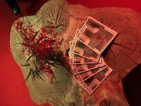 seLecT: Lançamento da edição de aniversário da revista na ArtRio