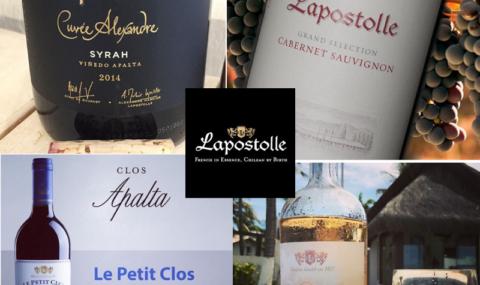 Em São Paulo, um evento imperdível para conhecer mais sobre os maravilhosos vinhos chilenos