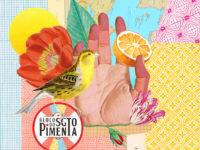 SARGENTO PIMENTA: Bloco lança versão para música dos Beatles