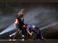 Dicas de Espetáculos de Dança em São Paulo no mês de Fevereiro
