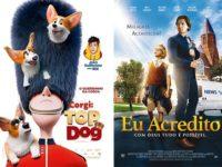 Corgi: Top Dog e Eu Acredito: Animação com João Guilherme e longa sobre o poder da fé são os próximos destaques da Imagem Filmes