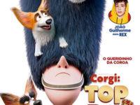 """""""CORGI: TOP DOG"""": ANIMAÇÃO COM JOÃO GUILHERME,  GANHA NOVA DATA DE LANÇAMENTO"""