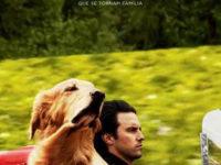 """""""MEU AMIGO ENZO"""": FOX FILM DIVULGA PRIMEIRO TRAILER E CARTAZ"""
