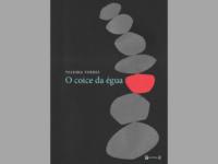 O Coice da Égua: poesias da periferia carioca