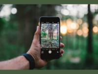 DIA DA FOTOGRAFIA: Veja as dicas da TIM para tirar boas fotos e ofertas em smartphones