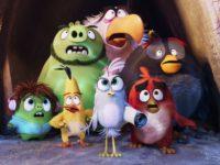 ANGRY BIRDS 2 e VIVO: Vivo Valoriza leva clientes para se hospedar em quarto temático Angry Birds