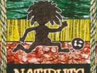 UNIVERSAL MUSIC STORE: disponibiliza, em primeira mão, a reedição do Hormônimo álbum de estreia da banda Natiruts