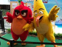 ANGRY BIRDS 2 – O FILME: PRÉ-ESTREIA PAULISTA FOI PARA LÁ DE DIVERTIDA!!