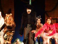 Espetáculo Infantil 'A Festa dos Bichos o Musical' estreia neste sábado (7) no Teatro Fashion Mall