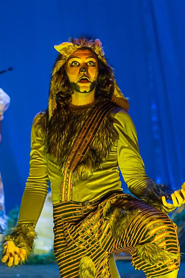 A Festa dos Bichos o Musical - Foto: Divulgação