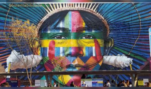 BrazilFoundation e Conservação Internacional: Organizações ambientais lançam ação conjunta para arrecadação de fundos a comunidades da Amazônia