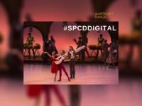 #SPCDdigital: A São Paulo Companhia de Dança anuncia programação online de 29 de junho a 10 de julho