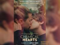 Chemical Hearts: Longa poderia ser mais do mesmo, porém surpreende ao abordar superação de traumas