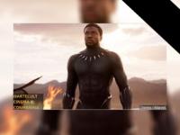 Chadwick Boseman: O Universo Cinematográfico Marvel perde o protagonista de Pantera Negra