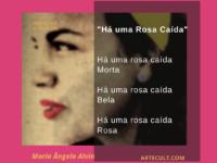 """Grandes Autores – Maria Ângela Alvin : """"Há uma rosa caída"""""""