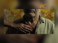 PRAZER, CAMARADAS! : Filme inspirado em relatos orais, textos literários e diários sobre a Revolução dos Cravos de Portugal