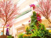 Shopping Leblon celebra a chegada da Primavera com instalações por Daniel Cruz