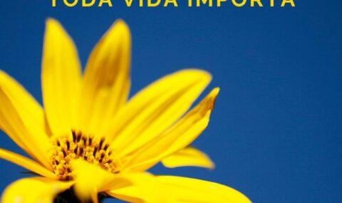 SETEMBRO AMARELO: Vanessa Jaccoud fala sobre a campanha Setembro Amarelo – Toda Vida Importa