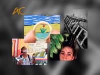 Para além da escola: Alunos do projeto ESCOLAS CRIATIVAS produzem exposição de fotografia no Museu de Arte Contemporânea de Niterói (MAC) – em 20 de outubro