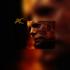HALLOWEEN KILLS: O novo capítulo que se aprofunda na origem do instinto maligno de Michael Myers