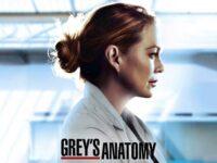 """Page Cardio! Star+ Estreia a 17ª temporada de """"Grey's Anatomy"""" em 06 de Outubro"""